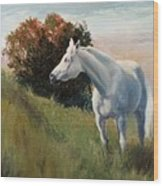 Suzie  Arabian Horse Portrait Painting Wood Print