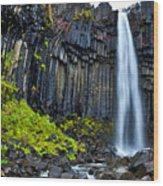 Svartifoss Waterfall - Iceland Wood Print