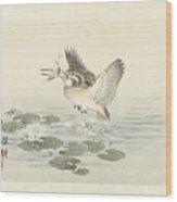 svogel, Kono Bairei, Aoki Kosaburo, Aoki Kosaburo, 1893 Wood Print