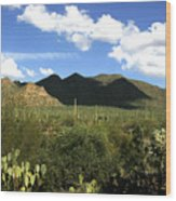 Sw194 Southwest Wood Print