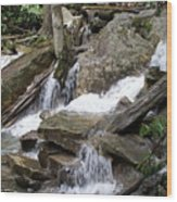 Swallow Falls Wood Print