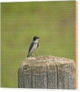 Swallow On A Stump Wood Print