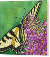 Swallowtail 1 Wood Print