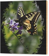 Swallowtail Butterfly 1 With Swirly Frame Wood Print