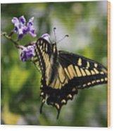 Swallowtail Butterfly 2 Wood Print