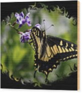 Swallowtail Butterfly 2 With Swirly Framing Wood Print