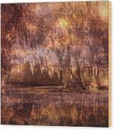 Swamp 3 Wood Print