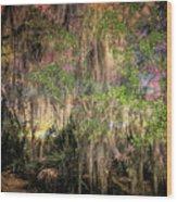 Swamp 2 Wood Print
