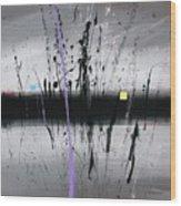 Swamp 2008 Wood Print