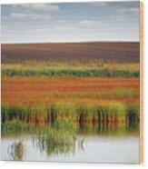 Swamp And Field Landscape Autumn Season Wood Print