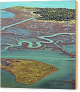 Swamp Area In Venice Wood Print by By LTCE