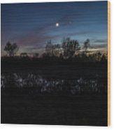 Swamp At Dusk With Moon Wood Print