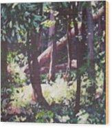 Swamp Glow Wood Print