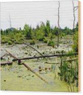 Swamp Habitat Wood Print
