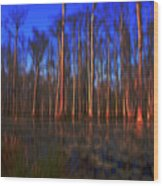 Swamp In Cypress Gardens Wood Print