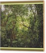 Swamp L B With Decorative Ornate Printed Frame. Wood Print