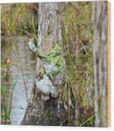 Swamp Monster Wood Print