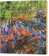 Swamp Pallet Wood Print