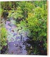 Swamp Plants Wood Print