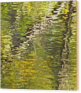 Swamp Reflections Abstract Wood Print