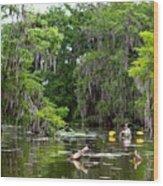Swamp Stroll Wood Print