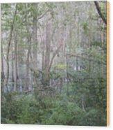 Photo Of Swamp Wood Print