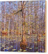 Swamp Tree Wood Print
