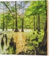 Swampland Dreams Wood Print