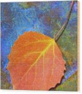 Swampoil Wood Print
