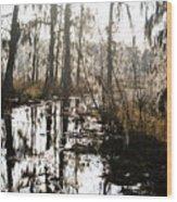 Swamps Of Louisiana 5 Wood Print