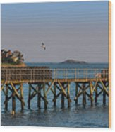 Swampscott Pier Swampscott Ma Wood Print