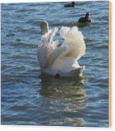 Swan 001 Wood Print