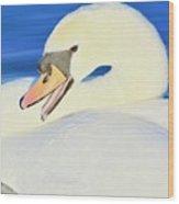 Swan 10 Wood Print