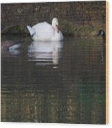 Swan And Geese Wood Print