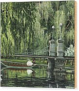 Swan Boats Wood Print by Lisa Reinhardt