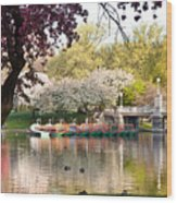 Swan Boats With Apple Blossoms Wood Print by Susan Cole Kelly