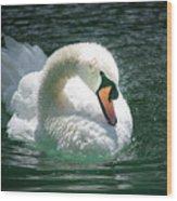 Swan Bow Wood Print