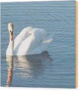 Swan Cape May Wood Print