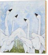 Swan Dance Wood Print