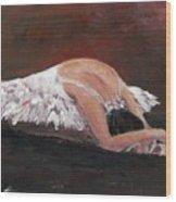 Swan Despair 2 Wood Print