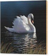 Swan Elegance Wood Print