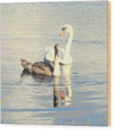 Swan G Wood Print
