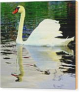Who Is Afraid Of The Big White Swan  Wood Print by Hilde Widerberg