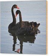 Swan Lake 5 Wood Print