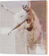 Swan Lake Dance  Wood Print