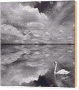 Swan Lake Explorations B W Wood Print