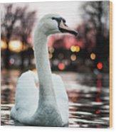Swan Lake Night 2 Wood Print