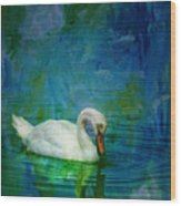 Swan On A Blue And Green Lake Wood Print