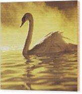 Swan On Gold Wood Print