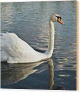 Swan On The Run Wood Print